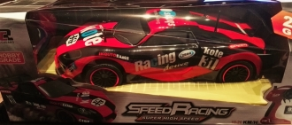 Speed Racing 1:10 R/C